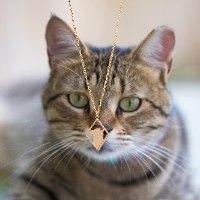 שרשרת מעויין חתול