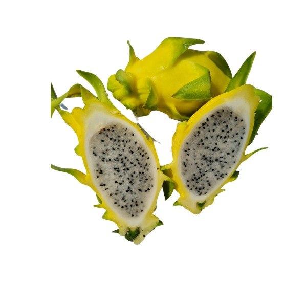פיטאיה צהובה - 1 יח'