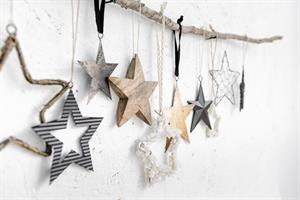 ענף עם 10 כוכבים