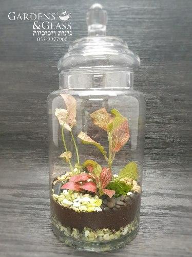 טרריום צנצנת מכסה זכוכית גדול
