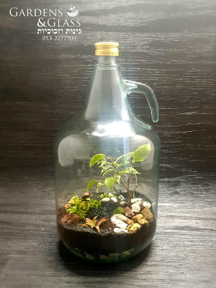 טרריום בקבוק 5 ליטר