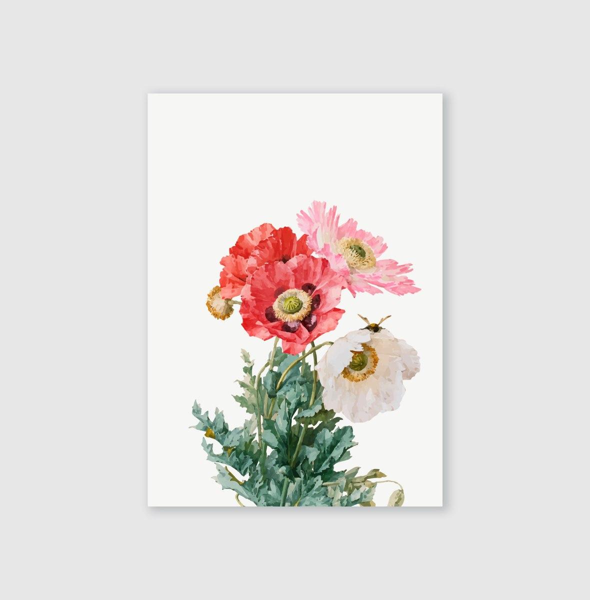 סט גלויות- פרחים אדומים