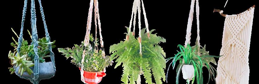 מתלי מקרמה לעציצים - ריבי עיצובים בטקסטיל, חוטי טריקו לסריגה ופריטים מעוצבים