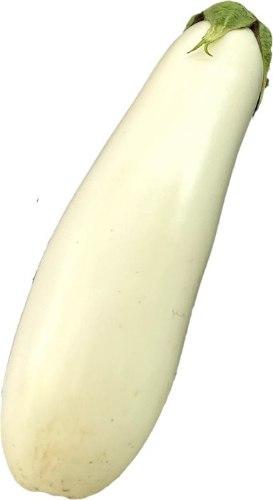 חציל לבן