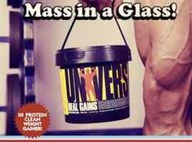 "גיינר יוניברסל נוטרישן ריל גיינס 3.1 ק""ג Universal Nutrition Real Gains"