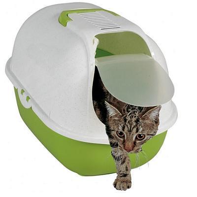 שרותים סגורים מעוגלים לחתול