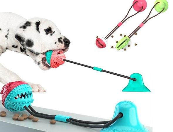 צעצוע כדור האכלה דנטלי לכלב