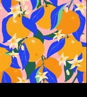 מארז 5 מחברות- תפוזים