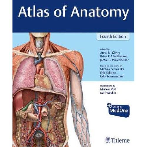 Gilroy - Atlas of Anatomy 4th edition