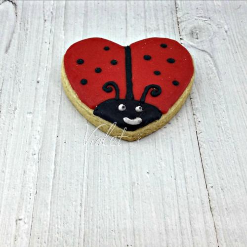 עוגית חיפושית