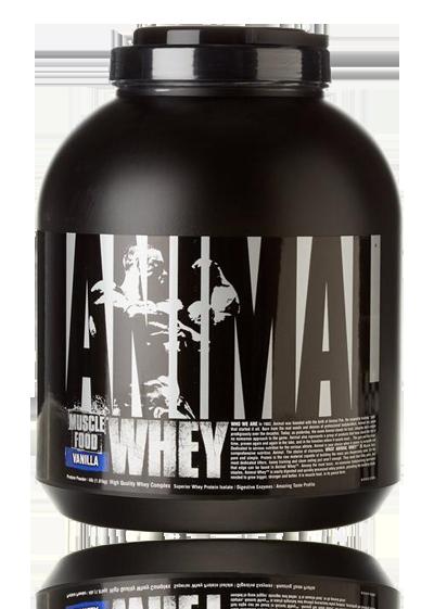 חלבון מי גבינה אנימל יוניברסל 1.8 ק״ג – Animal whey Universal