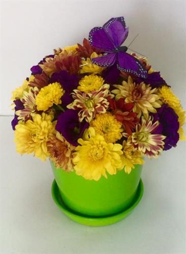 סידור פרחים בכלי קרמיקה-מקט 47