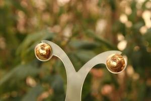 עגילי זריחת השמש-זהב