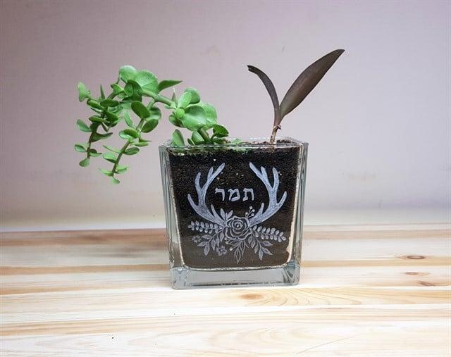 עציץ  ריבוע זכוכית - שם אחד ועיטור פרחים וקרני צבי