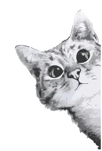 צביעה לפי מספרים - חתול קונדסון
