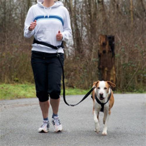 רצועה להליכה או ריצה עם הכלב TRIXIE