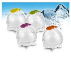 כדור קרח-הכוכב החדש של הקיץ!