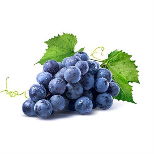 """ענבים שחורים """"אדורה- טלי"""""""