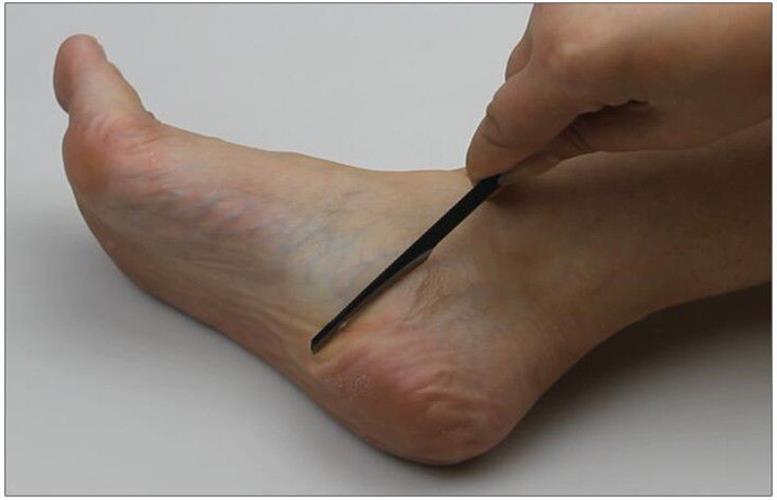 המוצר שיחדש לכם את כפות הרגליים