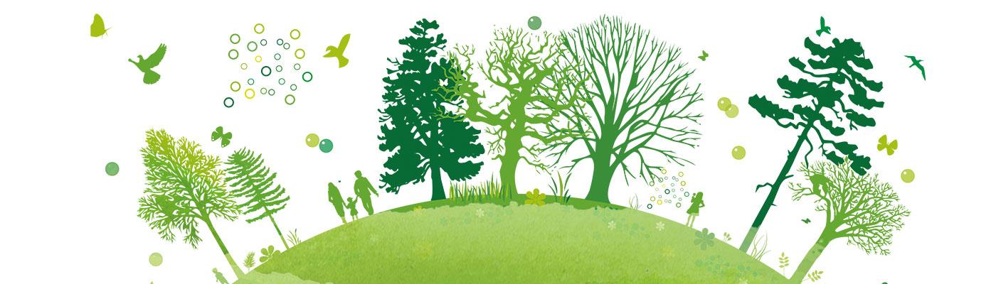 אקולוגיה - זיאה בר - כָּפִּינַה - מוצרים טבעיים