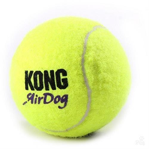 כדור קונג טניס מצפצף
