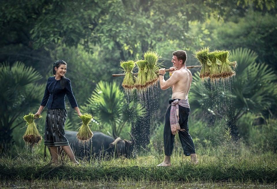 ויאטנם וקמבודיה מסע מרתק אל נופים מדהימים