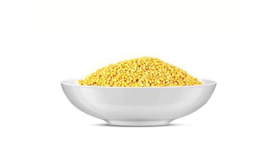 זרעי חרדל צהוב 100 גרם