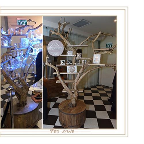פרימיום - עמדת העץ