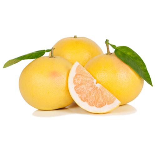 אשכולית צהובה