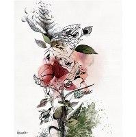 ציור של ורד אדום בצבעי מים