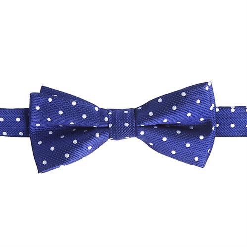 פפיון כחול רויאל מנוקד