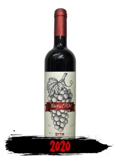 יין יגוטילוב 2020