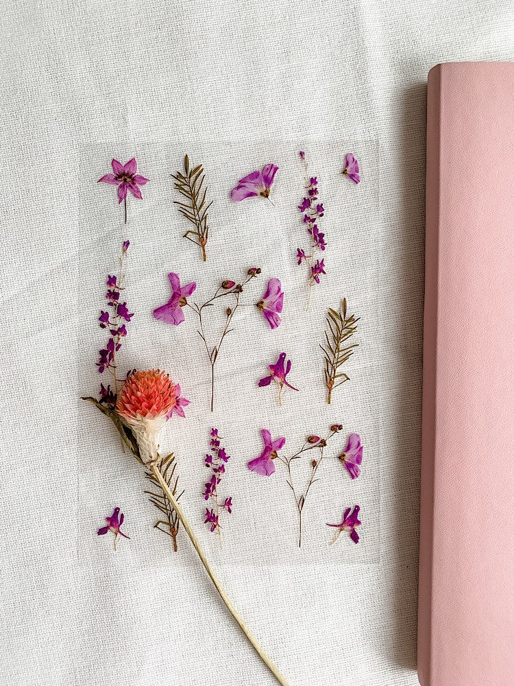 מדבקות פרחים- סיגליות