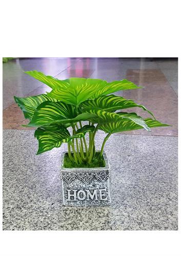 עציץ צמח מלאכותי HOME