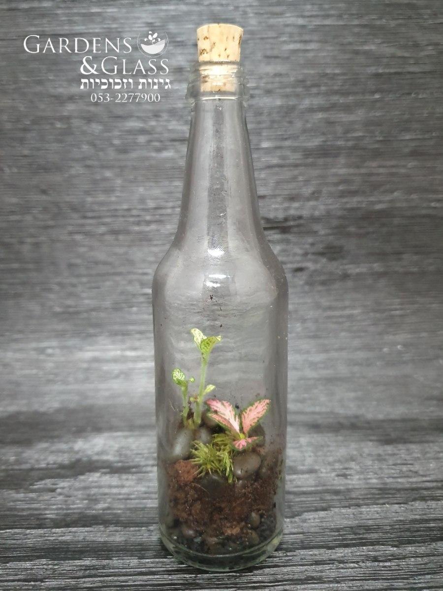 טרריום בקבוק מיני