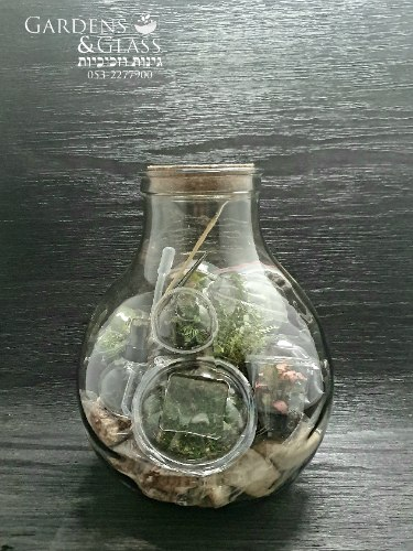 ערכת טרריום 5 ליטר