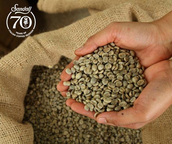 קפה ירוק תערובת Sandalj - Paganini Blend