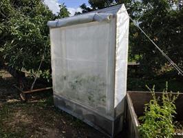 ארון שמש לעגבניות - ערכה מלאה