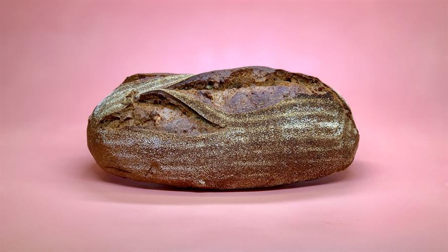 שיפון אגוזים