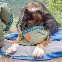 קערת מים ומזון לכלבים Backpacking Bowl