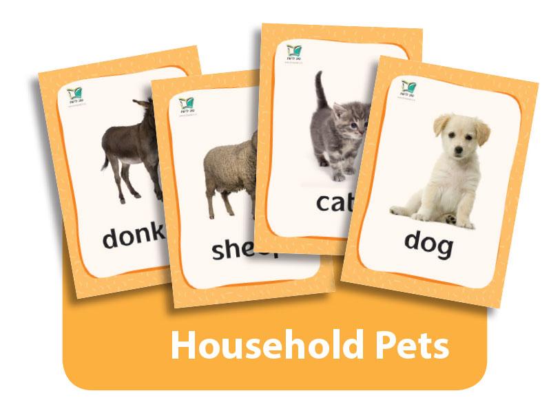 קטגוריה – חיות חוה (כרטיסי הברקה) | Household Pets Flashcards