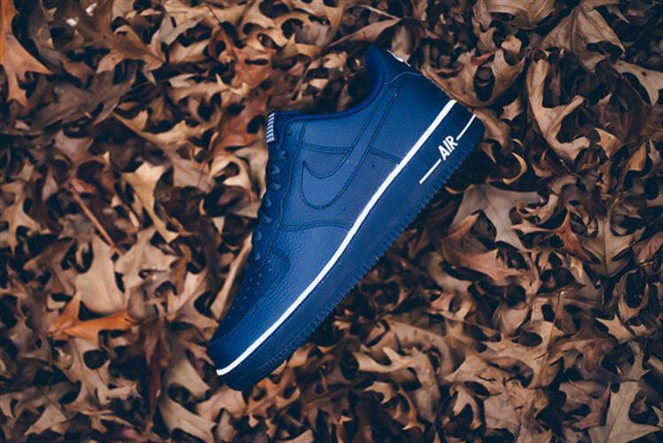 נעלי ספורט מעוצבות Nike Air Force1 Loyal Blue