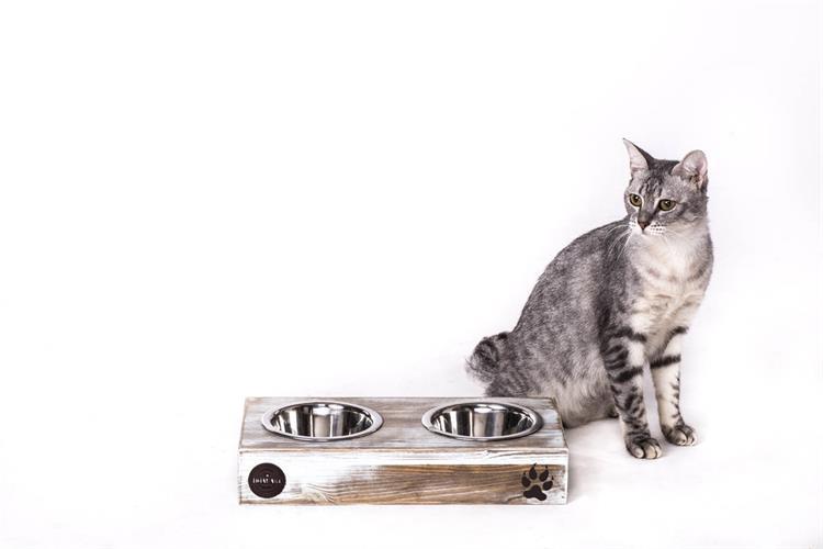 כלי אוכל ושתיה לחתול - ג'קסון S