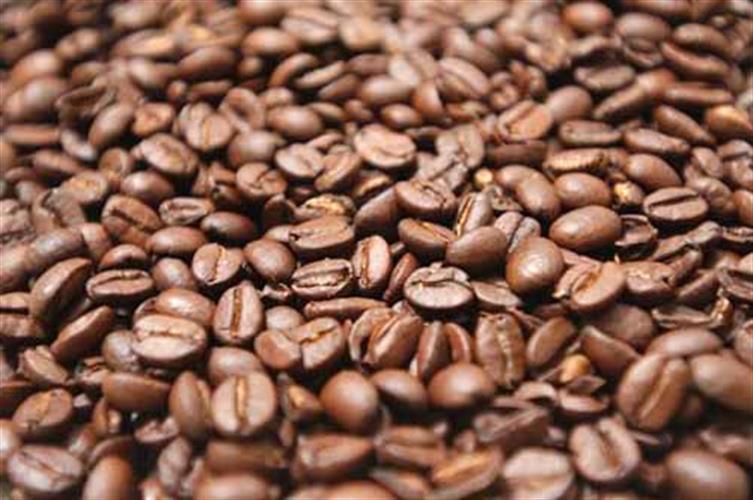 1/2 קג קפה Sandalj - Verdi Blend
