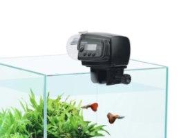 מאכיל דגים אוטומטי
