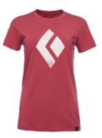 חולצת נשים ש.ק CHALKED UP AP730052