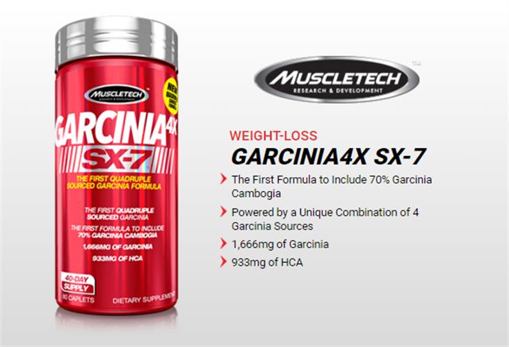 גרסיניה 4X SX-7 מבית מאסל טאק-80 כדורים|שורף שומן