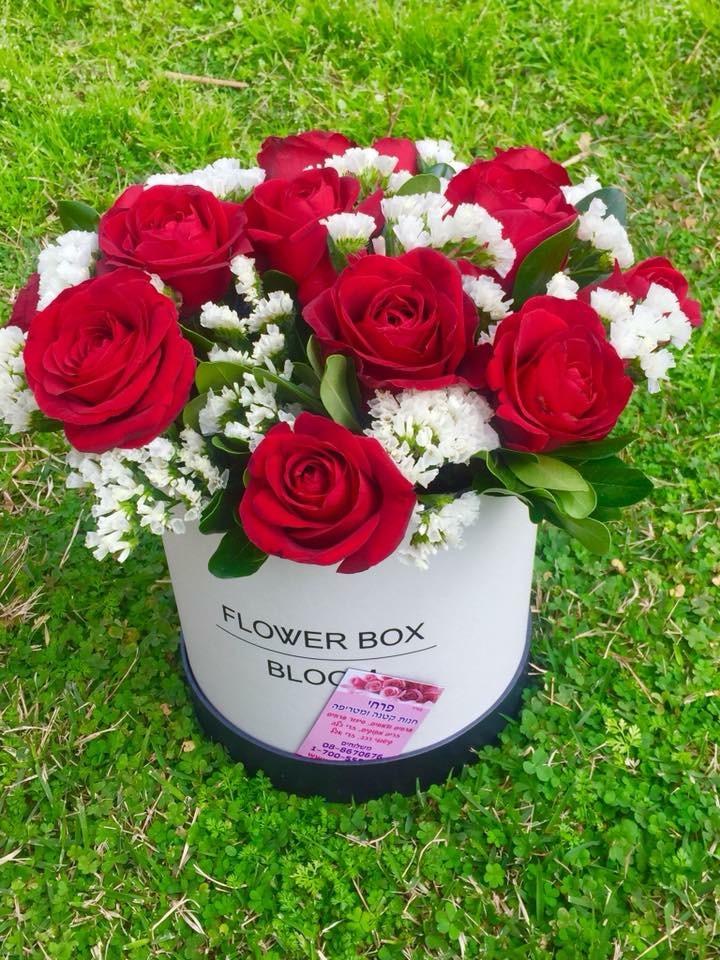 קופסא ורדים-מקט  009