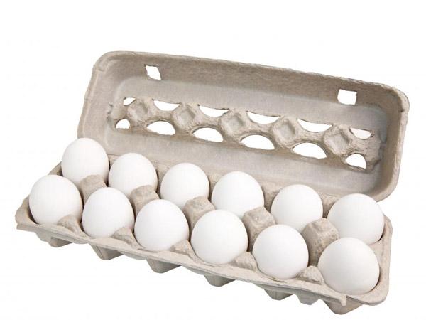 תבנית ביצים 12 יחידות מידה L