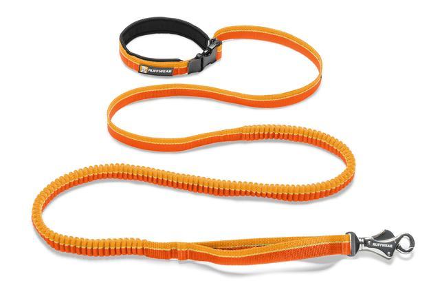רצועה לכלב אלסטית Roamer leash
